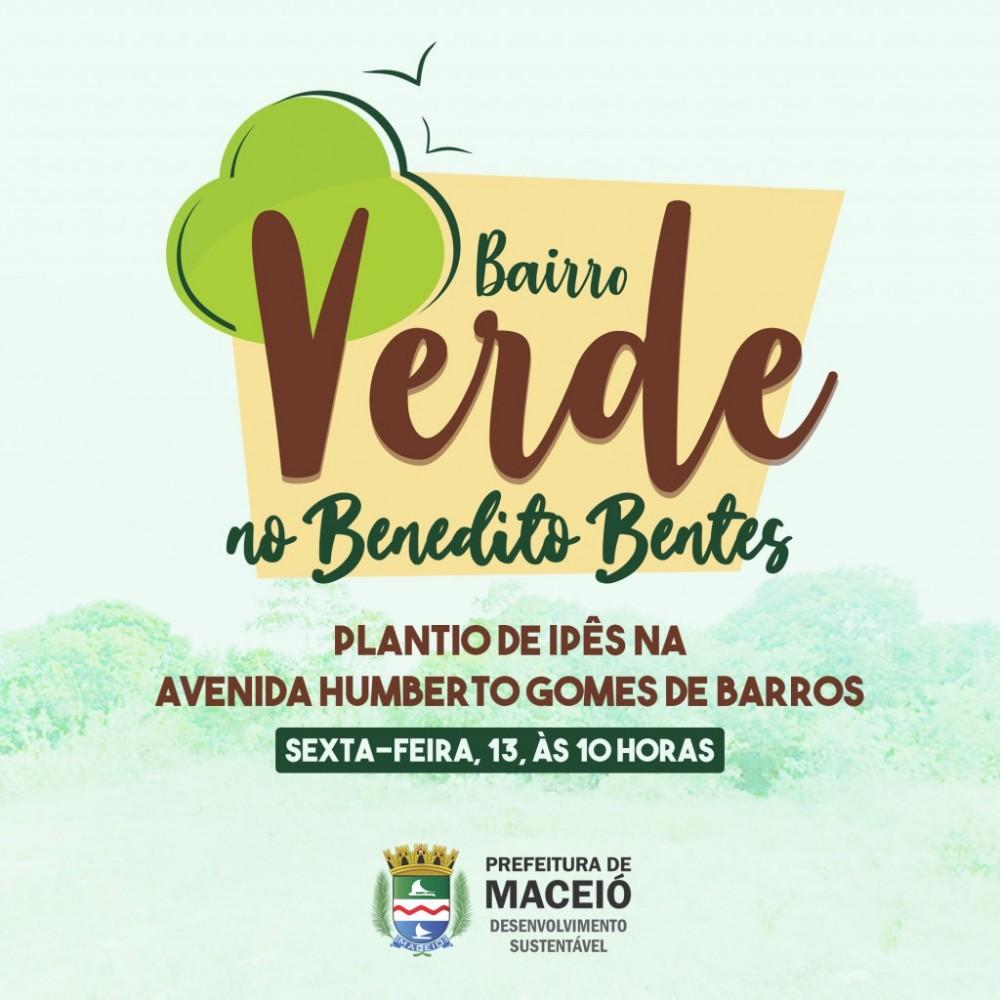 BAIRRO VERDE – Nova avenida ganha 100 ipês, nesta sexta-feira