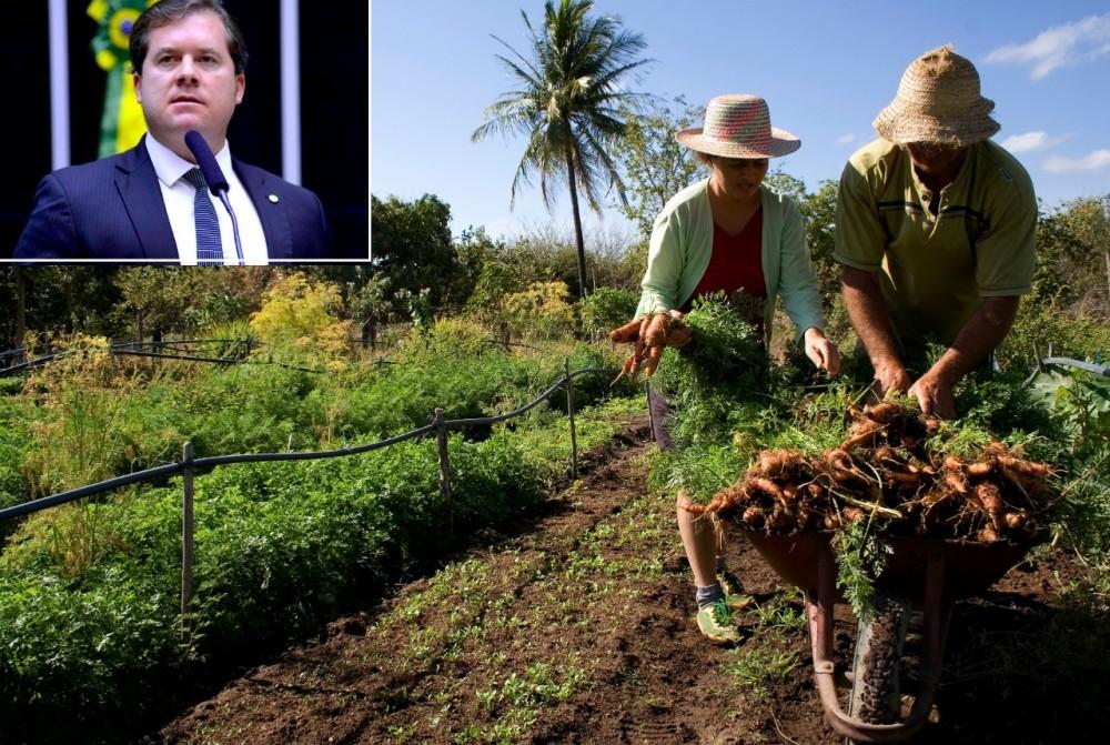 OPORTUNIDADE – Com trabalho de Marx Beltrão, agricultores ganham nova chance para renegociarem dívidas