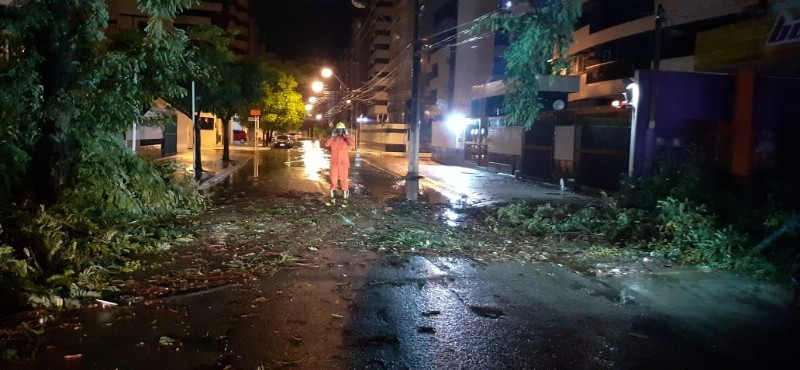 PRESENTINHO DA CHUVA – Temporal derruba parte de árvore que cai em via da Ponta Verde